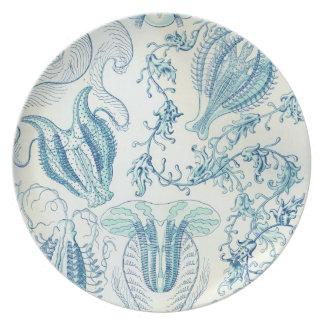 Microscopic Zoo Plate