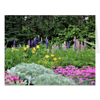 Mid-Spring Lupine Lily Dianthus Card