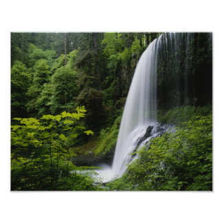 Middle North falls, Silver Falls State Park, Poster