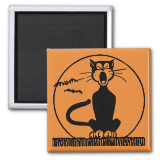 Midnight Alley Cat Square Magnet