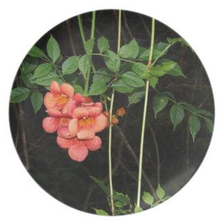 Midnight Flowers Plate