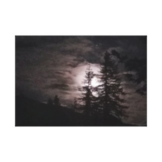 Midnight Moon in the Trees Canvas Print