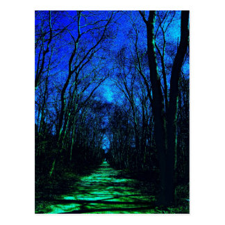 Midnight Path Postcard