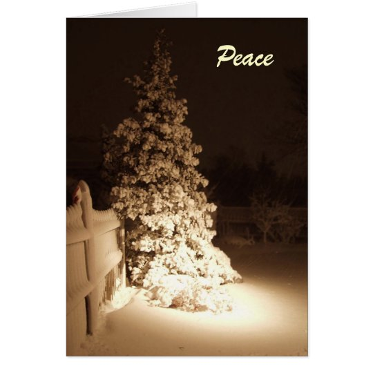 Midnight Peace Holiday Card