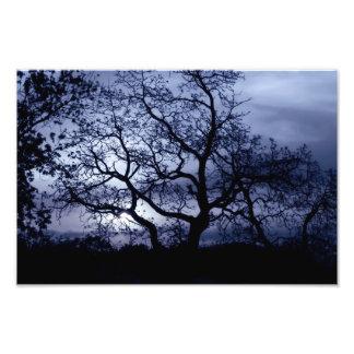 Midnight Sunset Photo Print
