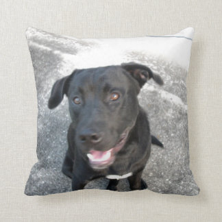 Midnight the Black Lab Smiles Cushion