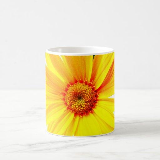 Midnight Yellow Daisy Mug