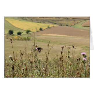 Midwest Beauty Scenic View Card