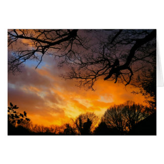 Midwinter Sunset - Greeting Card