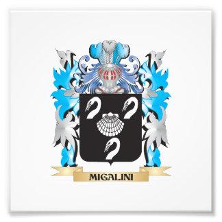 Migalini Coat of Arms - Family Crest Art Photo