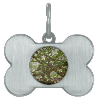 Mighty Angel Oak Pet Name Tag