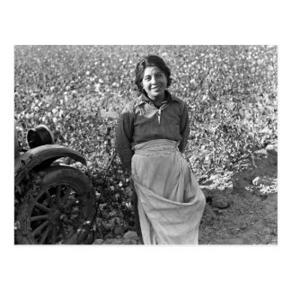 Migrant  Worker next to a Cotton Field Postcard