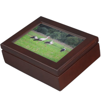 Migrating white storks, ciconia, in a meadow keepsake box
