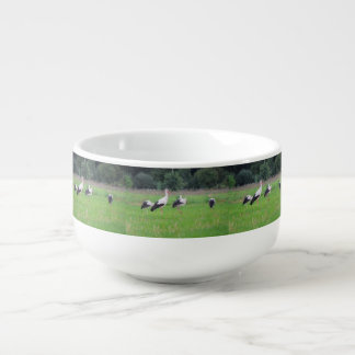 Migrating white storks, ciconia, in a meadow soup bowl with handle