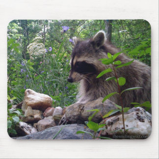 Mika the Raccoon Mouse Pad