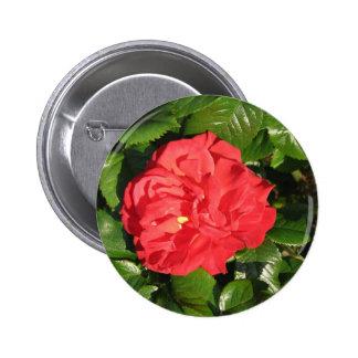 Mikado Hybrid Tea Rose 007 6 Cm Round Badge