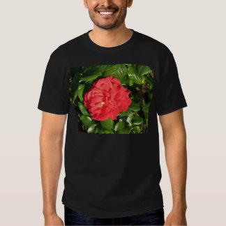 Mikado Hybrid Tea Rose 007 T Shirts