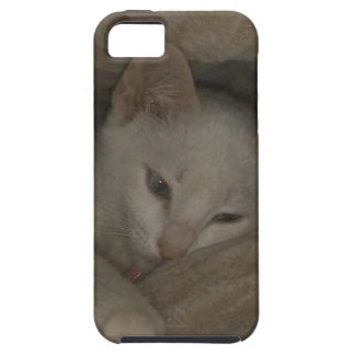 mikaela KITTEN Tough iPhone 5 Case