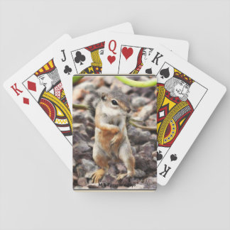 Mikey Ground Squirrel Game Cards