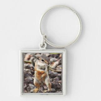 Mikey Ground Squirrel Key Chain