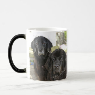 Mildred & Harry-It Morphing Mug