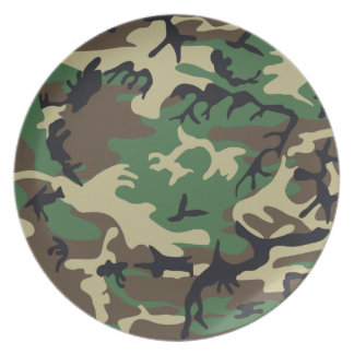 Military Camouflage Plate