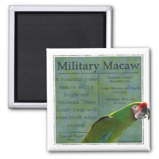 Military Macaw Magnet
