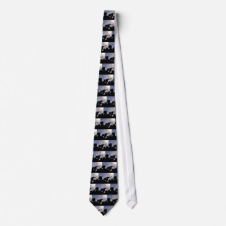 MILITARY TROOP SUPPORT TIE