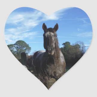 Milk Chocolate Brown Horse in Blue Heart Stickers