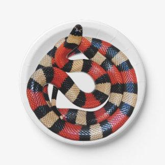 Milk snake paper plate