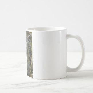 Milk Weed Pods Coffee Mugs