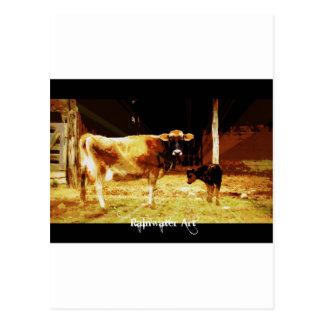 Milking it post card