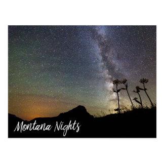 Milky Way Over Montana Mountains & Wildflowers Postcard