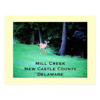 Mill Creek, New Castle County, Delaware Postcard