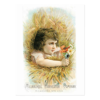 Milwaukee Harvester Co Postcard