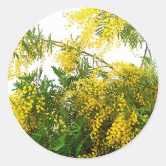 Mimosa Classic Round Sticker