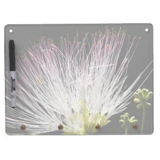 Mimosa Horizontal Dry Erase Board