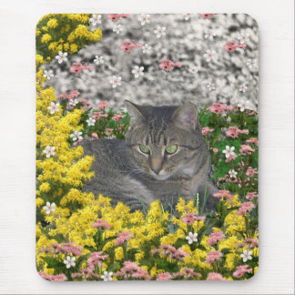 Mimosa the Tiger Cat in Mimosa Flowers Mouse Pads
