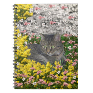 Mimosa the Tiger Cat in Mimosa Flowers Note Book
