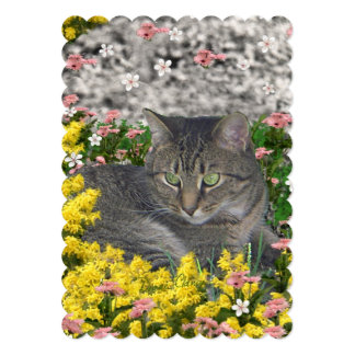"""Mimosa the Tiger Cat in Yellow Mimosa Flowers 5"""" X 7"""" Invitation Card"""