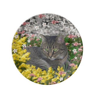 Mimosa the Tiger Cat in Yellow Mimosa Flowers Porcelain Plates