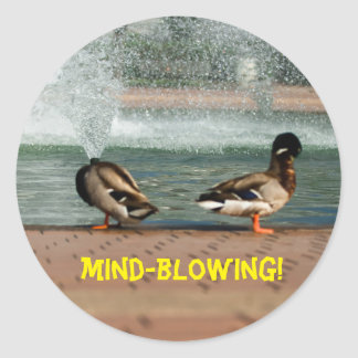 Mind-Blowing Experience Duck Classic Round Sticker