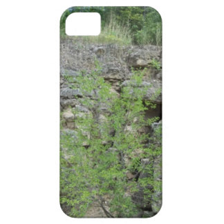 Mines of Spain bluff iPhone 5 Covers