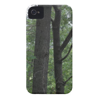 Mines of Spain Trees with Mississippi River Case-Mate iPhone 4 Cases