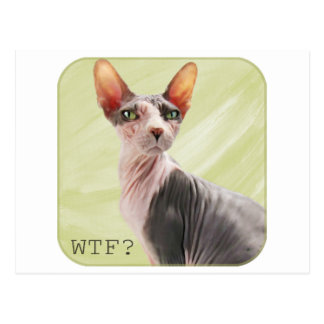 "Ming says ""WTF?"" Postcard"