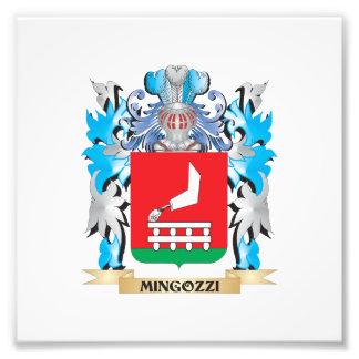 Mingozzi Coat of Arms - Family Crest Photo Art