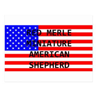 mini am shep name on flag red merle postcard