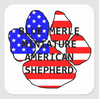 mini am shep paw name flag blue merle square sticker