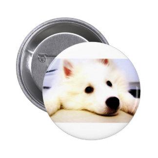 Mini American Eskimo 6 Cm Round Badge