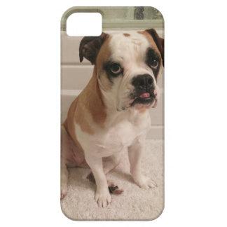 Mini Bulldog Puppy Eyes iPhone 5 Cases